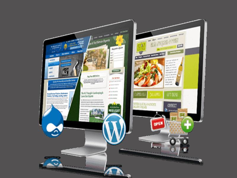 Creare si optimizare website, blog si magazin online - Slask.ro